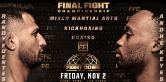 Final Fight Championship 33